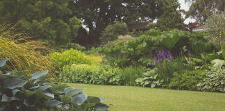 zomerklaar tuin